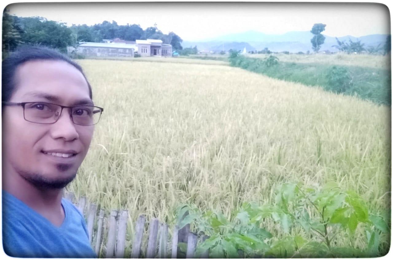 HUT Ke-18 Kota Bima, Babuju Mandiri Persembahkan Produk Beras Premium Organik
