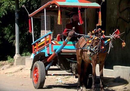Jalan-Jalan Keliling Kota Bima dengan BENHUR kendaraan Transportasi Tradisional di Bima Dompu NTB