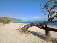 Pantai Seranae, Pantai yang Cantik dengan Pasir Putihnya yang Menawan di Ujung Selatan Bima